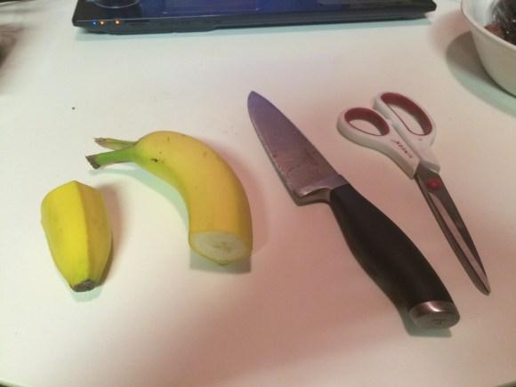 banana dolphin (3)