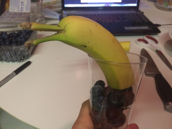 banana dolphin (4)