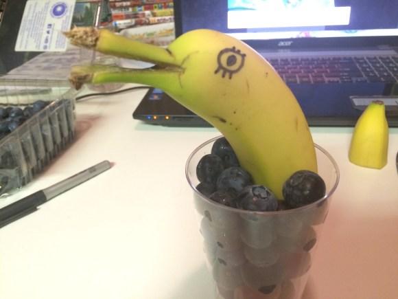 banana dolphin (7)