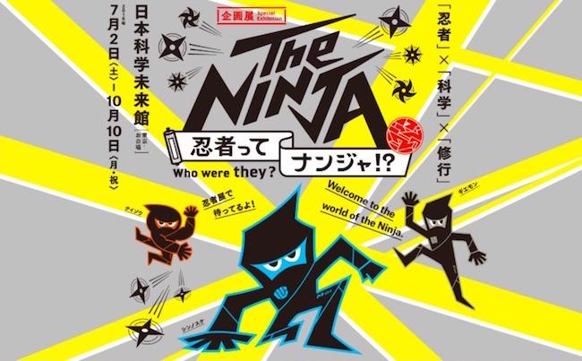 ninja top