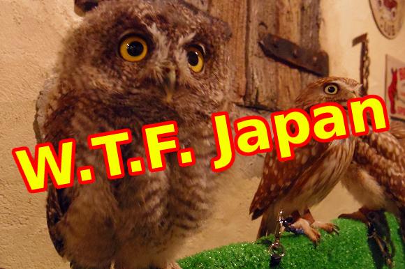 wtf japan cafes top 2