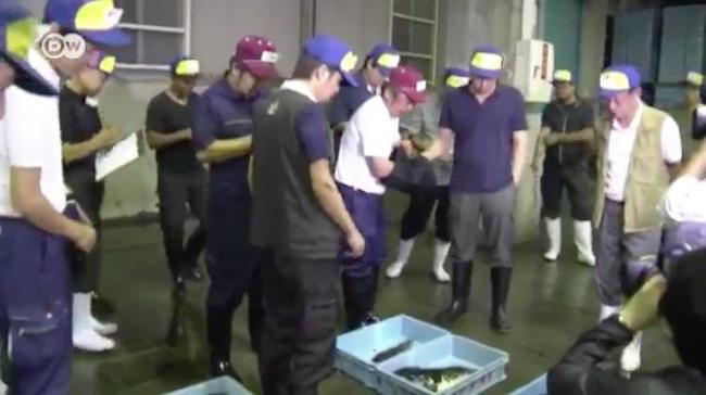 fugu-2