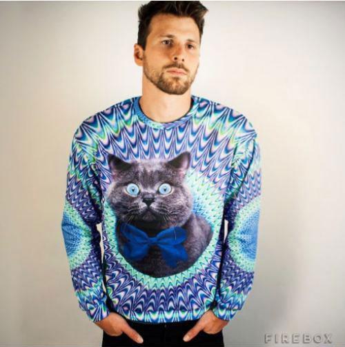 pullover_cat