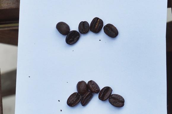 coffeebaisenkit18