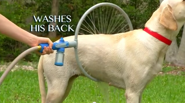 wash1