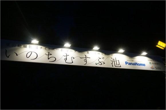 2015_08_yu035