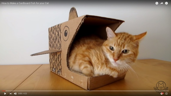 osakanahouseforcat1