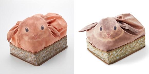 ネザーランドドワーフとチンチラウサギ